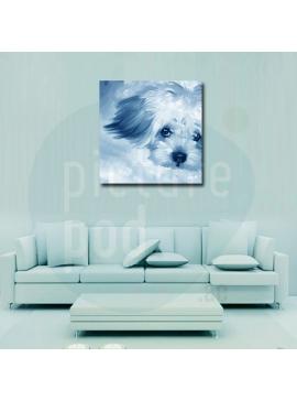 Canvas Frame - 60 x 60cm